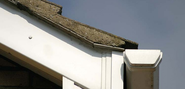 Fascias and soffits in Scotland