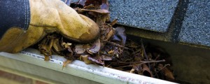 Emergency Roof Repairs